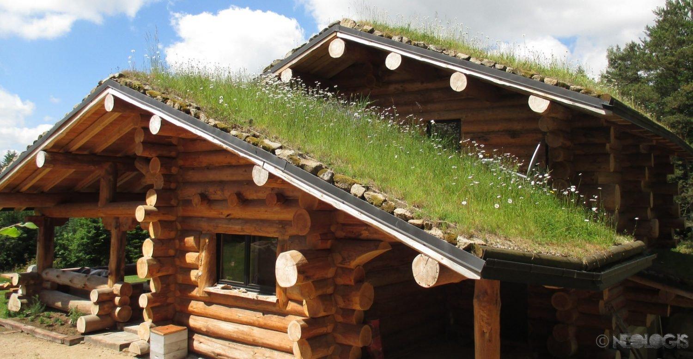 Maison Ossature Bois Vosges néologis : construction fuste, maison bois brut, poteau poutre
